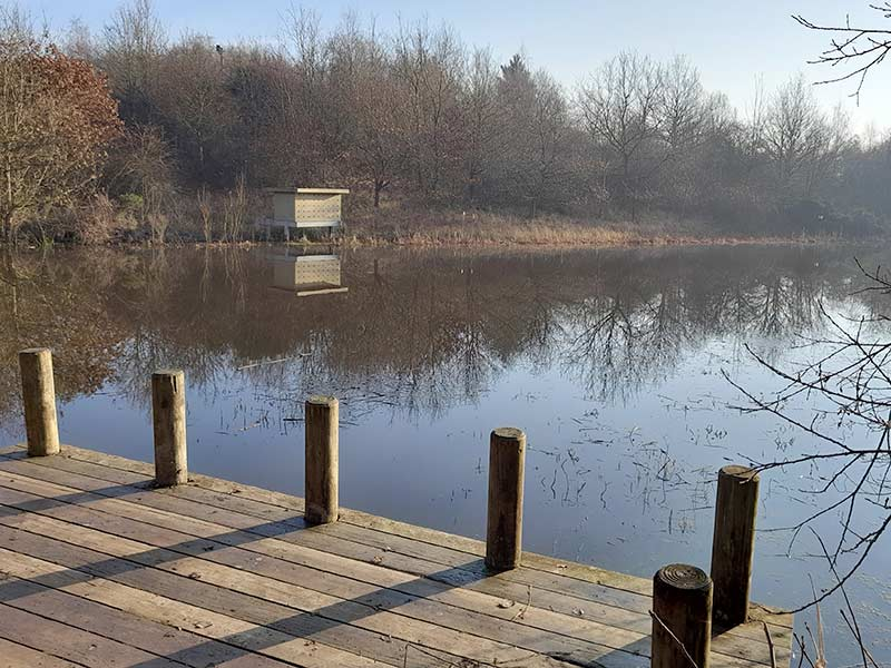 New Lount Nature Reserve
