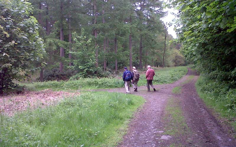 Walkers using one of the footpaths around Coleorton